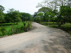 new road Avellanas
